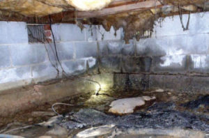 Emergency Crawl Space and Basement Waterproofing and mold removal Charlotte, Concord, NC