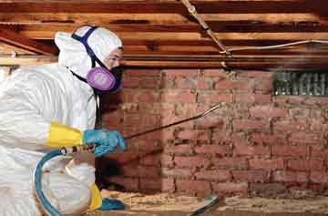 Crawl Space and Basement Mold Remediation, Mold Removal, Mold Testing, Charlotte, Concord, NC